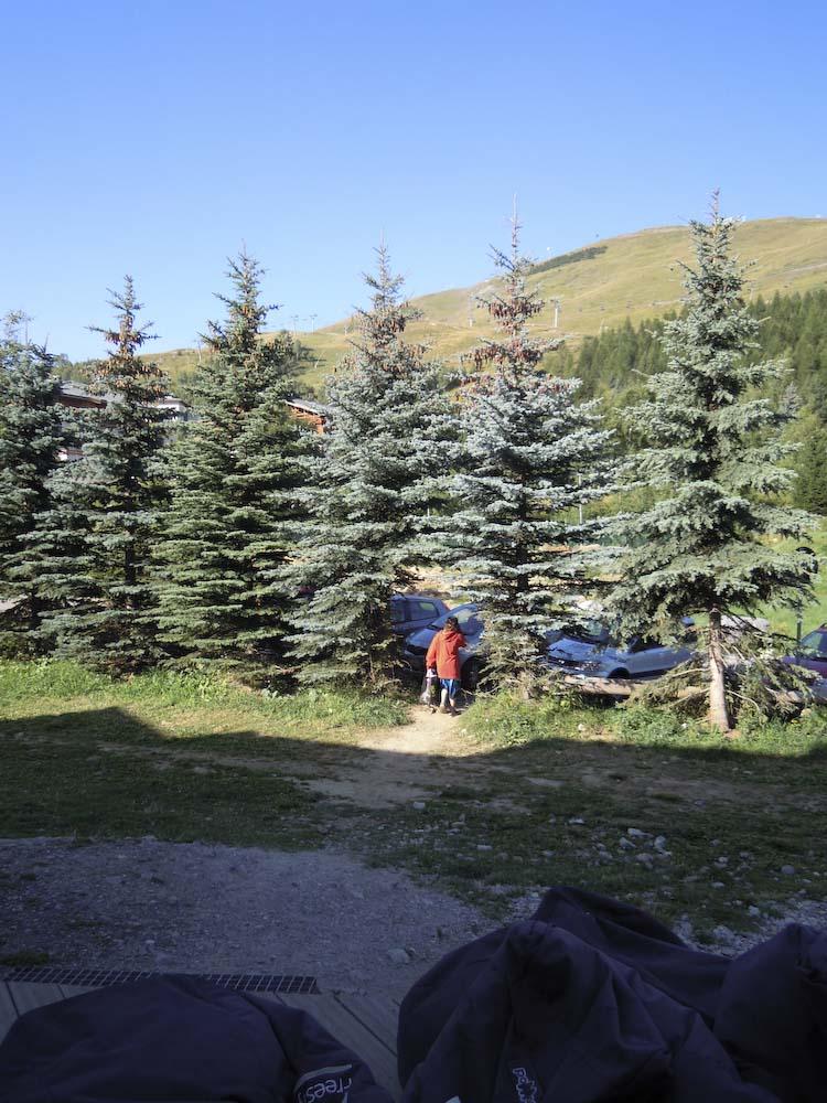 Dadino Colturi scompare tra gli alberi di Facciosnao Camp